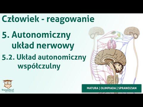 Samica patogen bez recepty w Tule