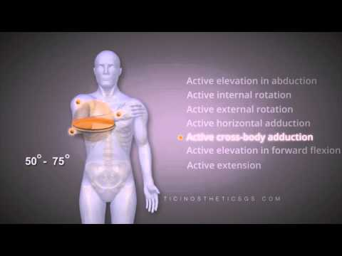 I sintomi della malattia delle articolazioni delle gambe