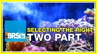 Choosing the right two part for your reef tank | BRStv Reef Gear Guide