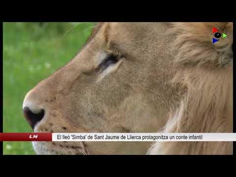 Lleó 'Simba' de Sant Jaume de Llierca s'explica als més petits en un conte