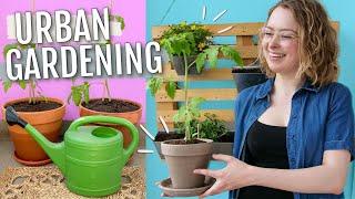 Ich teste Gemüse anbauen auf dem Balkon - Selbstexperiment