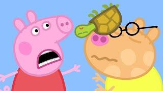Peppa Pig Full Episodes | Peppa Pig and Ambulances