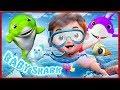 🔴 Baby Shark , Birthday Song , Wheels on the Bus , Happy Birthday Song - Banana Cartoon