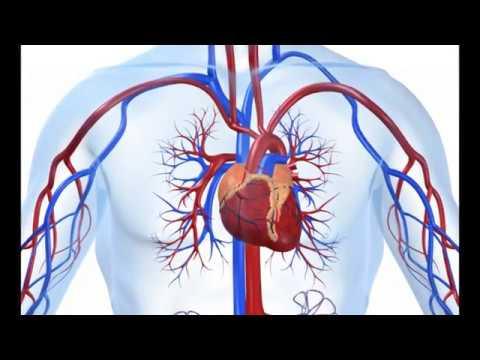 Hipertenzija 2 ili 3 stupnja
