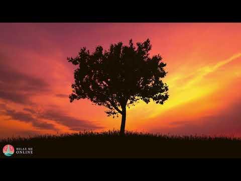 Angelic Meditation Music, Fall Asleep Fast, Calming Sleep Music, Meditation Sleep Music #134