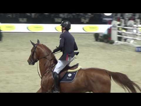 Emerald - Mechelen CSI5* Stallion Competition Round 1