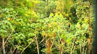 preview picture of video 'Canopy Adventure Zip Line Tours'