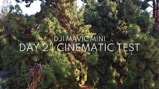 Day 2 Cinematic and FPV Test with the DJI Mavic Mini | Griffith Park Los Angeles
