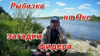 Рыбалка под тарусой на оке