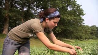 Massachusetts Farm School: America's Heartland