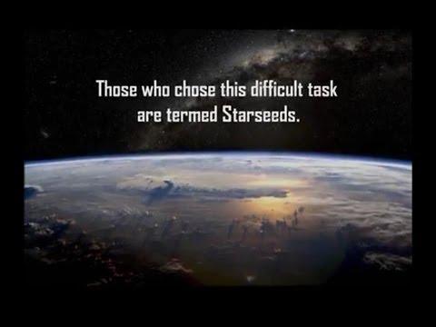 Starseed - новый тренд смотреть онлайн на сайте Trendovi ru