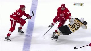 Detroit Red Wings Hits and Fights (2018-2019)