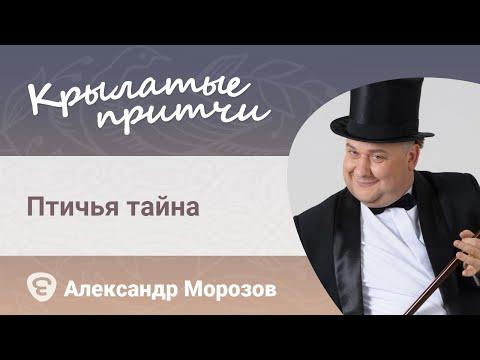 https://youtu.be/18hJIlgQ_Ko
