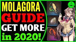 MolaGora F2P Guide! 🔊 (Get more Mola!) Epic Seven 2020