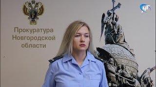 Прокуратура Окуловского района в суде добилась отстранения от должности главы Угловки