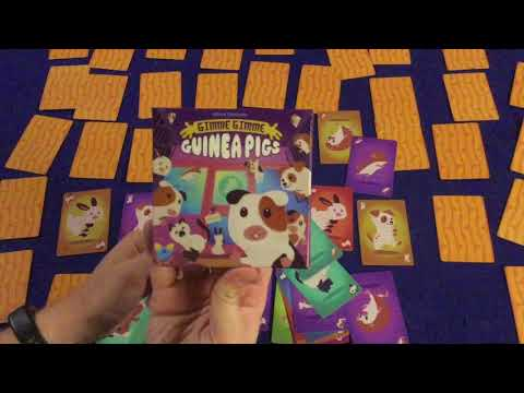 Bower's Game Corner: Gimme Gimme Guinea Pig Review