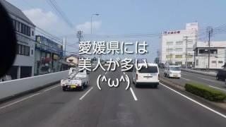 愛媛県が日本一に選ばれました。≧∀≦ノ