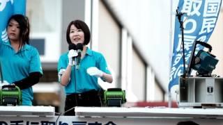 鈴木りこ桜井誠応援演説2016年7月30日秋葉原駅前