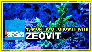 Update 3: Two years of coral growth and coloration with the ZEOvit System | 52 Weeks of Reefing #BRS160