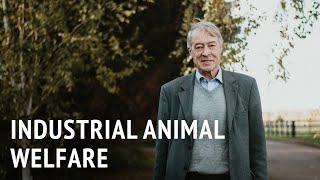 Prof. Donald Broom – Industrial Animal Welfare