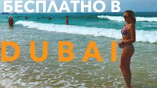 Эмираты! Бесплатно едем в Дубай. Ужин. Что скрывает подводный мир, Персидский залив Море, пляж ОАЭ