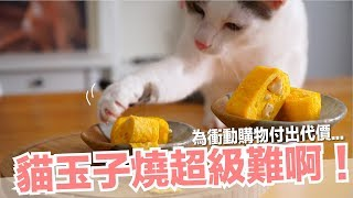我吃失敗品吃飽了...技術流貓玉子燒【貓副食食譜】好味貓鮮食廚房EP141