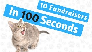 Fundraising Ideas With Photos - 10 In 100 Seconds