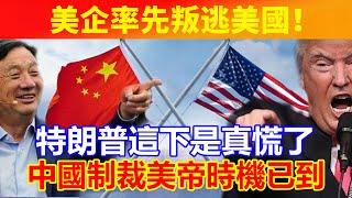 美企率先背叛逃美國!特朗普這下是真慌了,中國制裁美帝時機已到