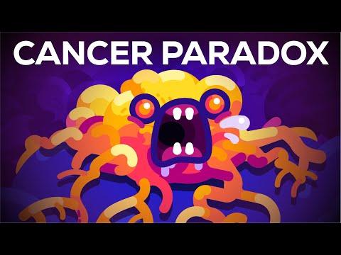 Parazita kezelés a tököt