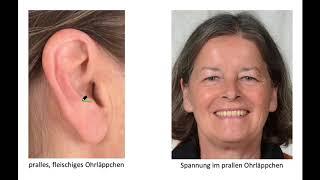 Die Ohren 1