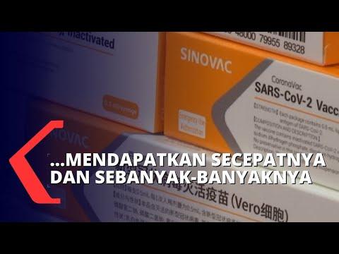 pemerintah pastikan pengadaan vaksin covid- sesuai standar who