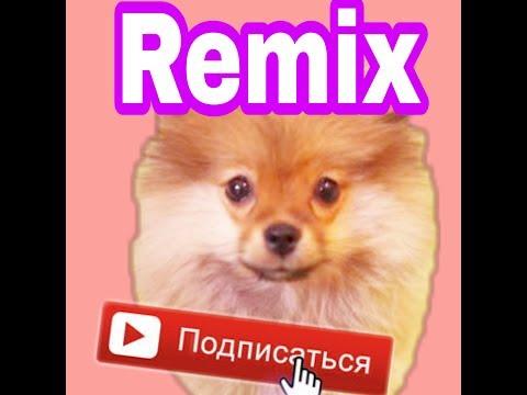 Кума чан [ Remix ]