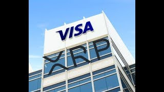 Visa CEO Knows What