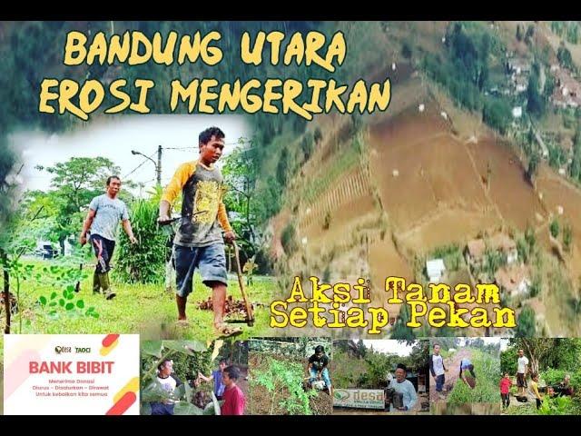 Aksi Tanam di Padang Pasir Kawasan Bandung Utara