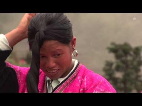 Das Öl mit der Ringelrose für das Haar