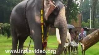 Gaja Ratnam Bastian Vinaya Sankar