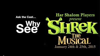 Why See Shrek The Musical