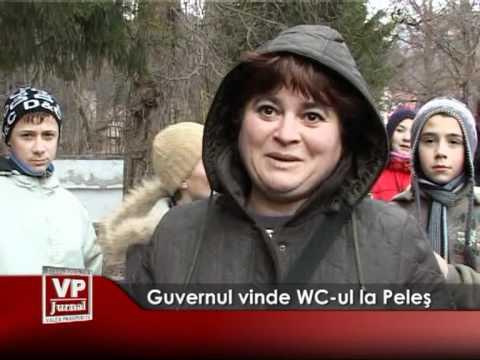 Guvernul vinde WC-ul de la Peleş