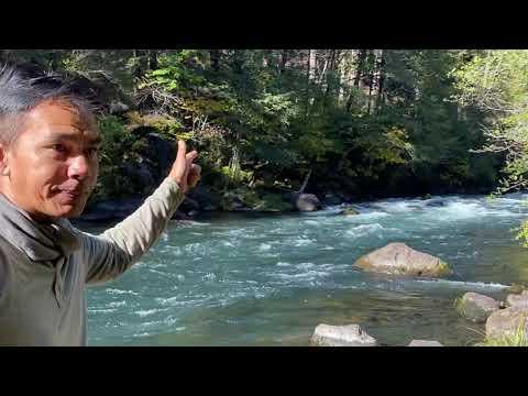 ទឹកជ្រោះ តំបន់ធម្មជាតិនៅខេត្ត Oregon USA   Family Trip to Waterfall in Oregon National Forest.