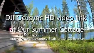 HD FPV at Our Summer Cottage (DJI Goggles RE live HD video link record at 1280x960)