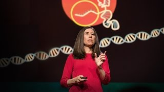 TED Talk: What You Need to Know About CRISPR