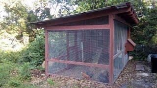 Backyard Chicken Coop And Run