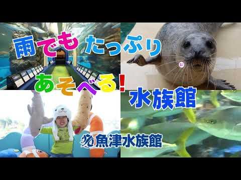 富山 魚津 遊園地 ミラージュランド 2019ゴールデンウィーク