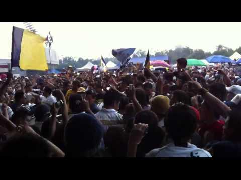 """""""Carnaval REBEL PUmas UNAM"""" Barra: La Rebel • Club: Pumas"""