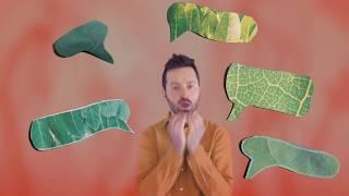 Tom Rosenthal   Spring (Official Video)