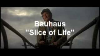"Bauhaus & Jaws - ""Slice of Life"""
