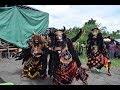 Seni Jaranan Buto Turonggo Mulyo Cursari Yosomulyo Banyuwangi 2018