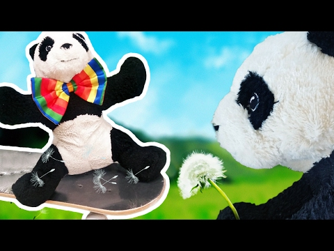 A Day in the Life of Ikea Panda Pandrew