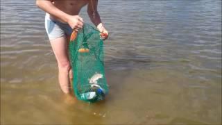 Рыбалка на ахтубе в колобовке