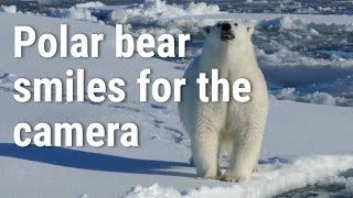 Newswise:Video Embedded a-rapidly-changing-arctic